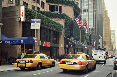 The London Hotel New York Jungle Plant Displays
